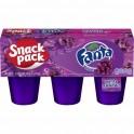 Fanta Snack Pack raisin 552 Gr